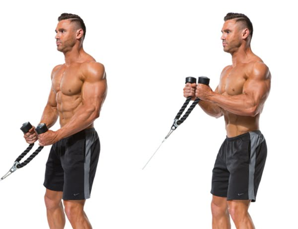 Standing Cable Biceps Curl