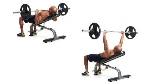10 Best Incline Bench Press 2020 – Do Not Buy Before Reading This!