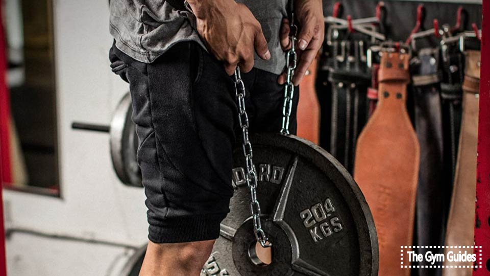 10 Best Dip Belts Reviewed For A Buyer: Ultimate Guide 2021